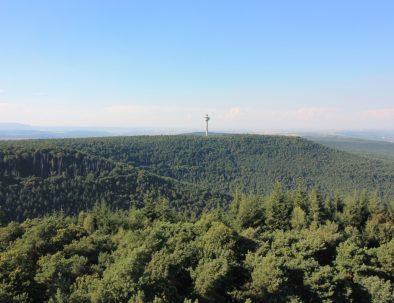 29_Blick von der Burg Drachenfels